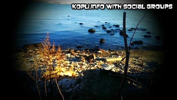 Фотографии с контакта берег около пляжа пальяссааре Копли VK - Путешествуем по Эстонии