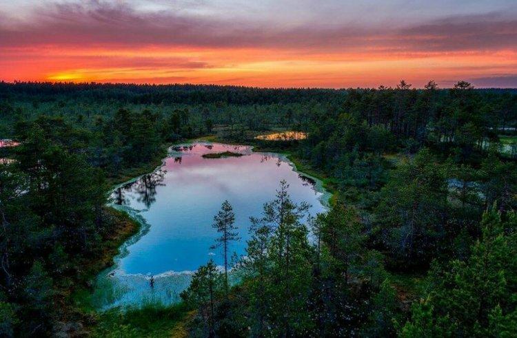 Что посмотреть Туристу в Эстонии - Путешествуем по Эстонии